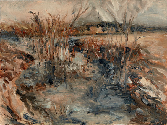 Reeds in the Bay (Colorado river, TX)