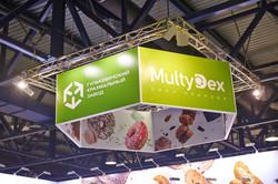 MultiDex_300dpi_16