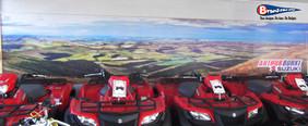 Showroom mural banner.jpg
