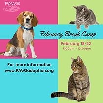 February Break Camp 2019.png