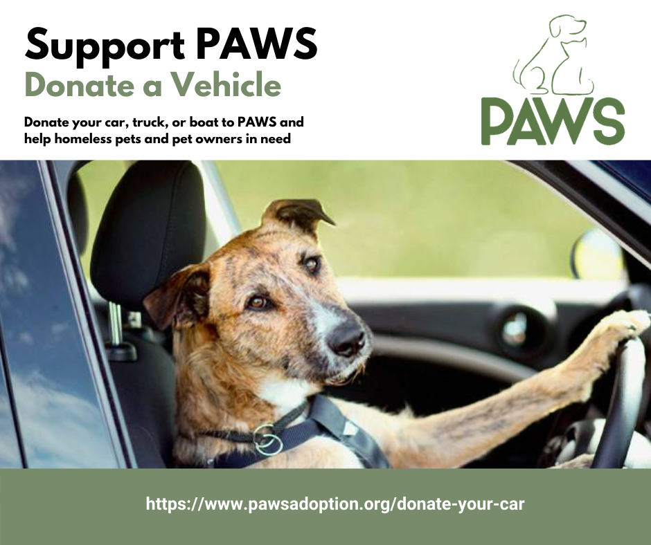 https___www.pawsadoption.org_donate-your