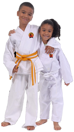 Kids Martial Arts Taekwondo Birmingham, MI | Royal Oak, MI