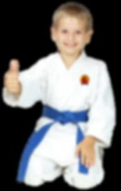 Kids Martial Arts Karate Birmingham, MI | Royal Oak, MI