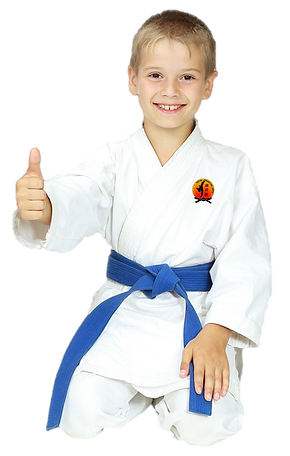 Kids Martial Arts Karate Birmingham, MI | Royal Oak, MI