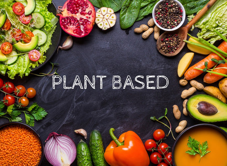 Plant Based Nutrition