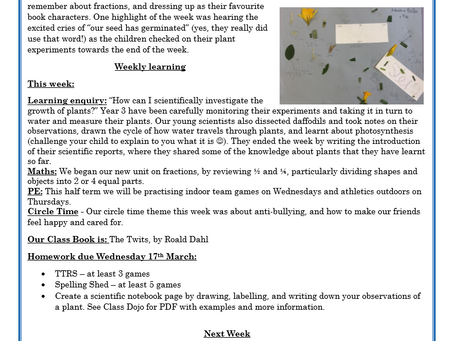 Year 3 Weekly Letter 19/03/2021