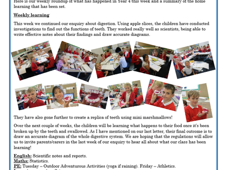 Year 4 Weekly Letter 25/06/2021