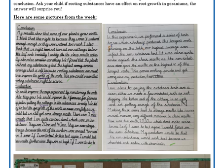 Year 5 Weekly Letter 28/05/2021