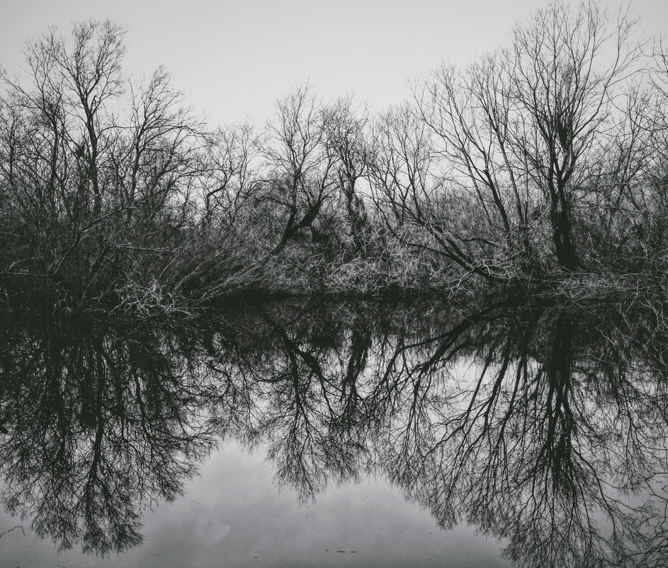 Foto 14-03-17 03 50 31 (2).jpg