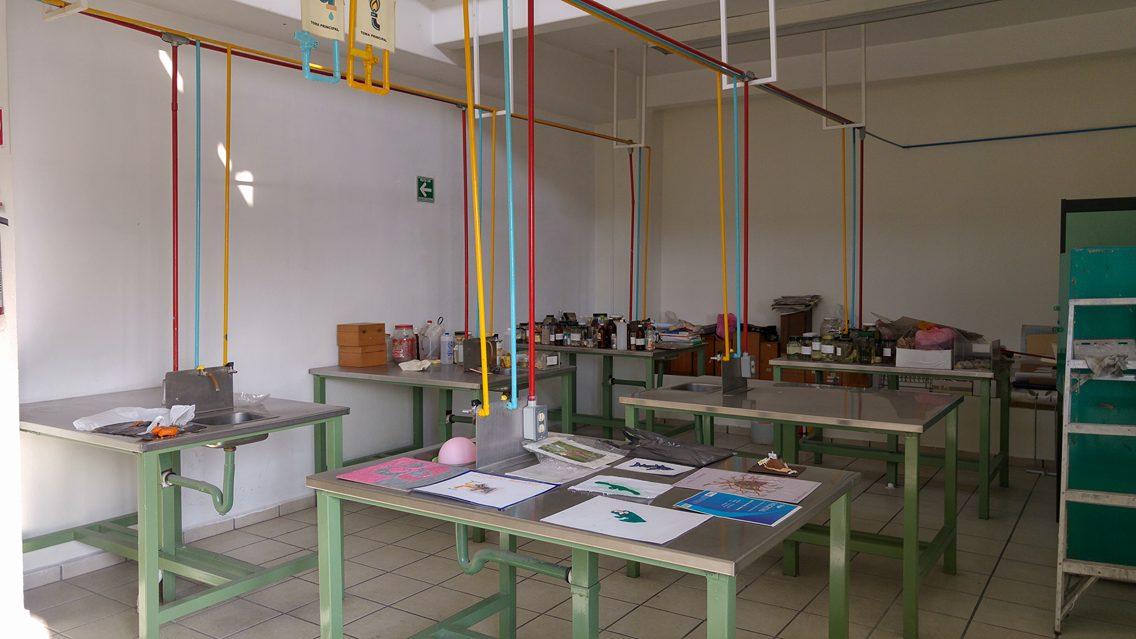 Laboratorios de Biología.