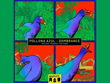 """Dombrance musicaliza los sonidos de la reserva Van Der Hammen en """"Pollona Azul"""""""