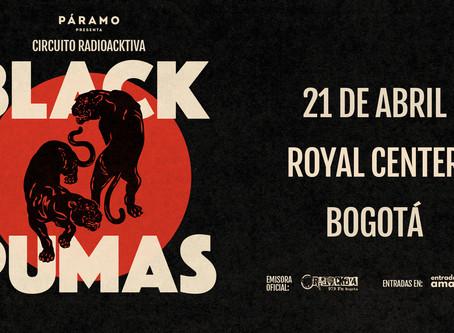 Black Pumas rugirá por primera vez en Colombia