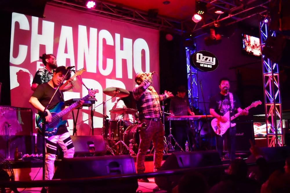Chancho en Piedra en Bogotá. Fotografía: Itinerante.