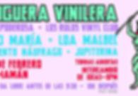 Hoguera Vinilera.jpg