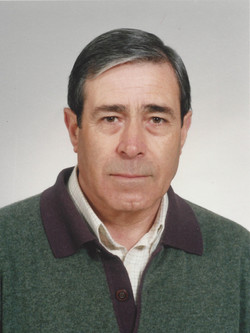 Sr. Manuel António Ramos Fernandes