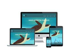 Save caretta turtles.org