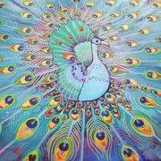 Metallic Peacock