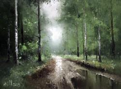 Лесная дорога близ Свапуще