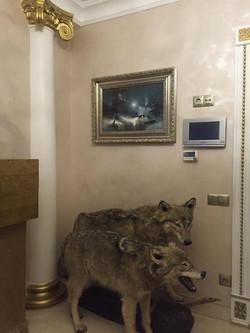 Медведев в интерьере