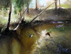 Река Сходня. 21 апреля.