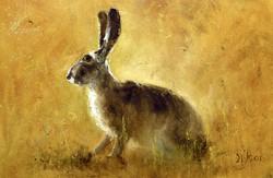 Про зайца