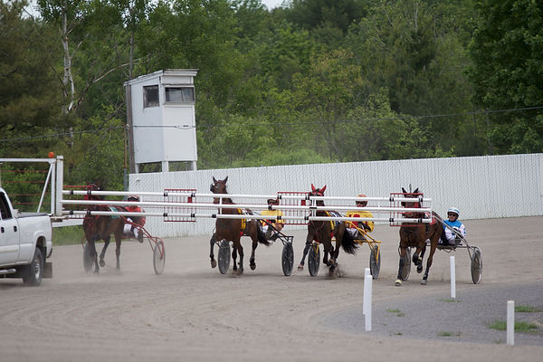 Scarborough Downs Learn and Earns