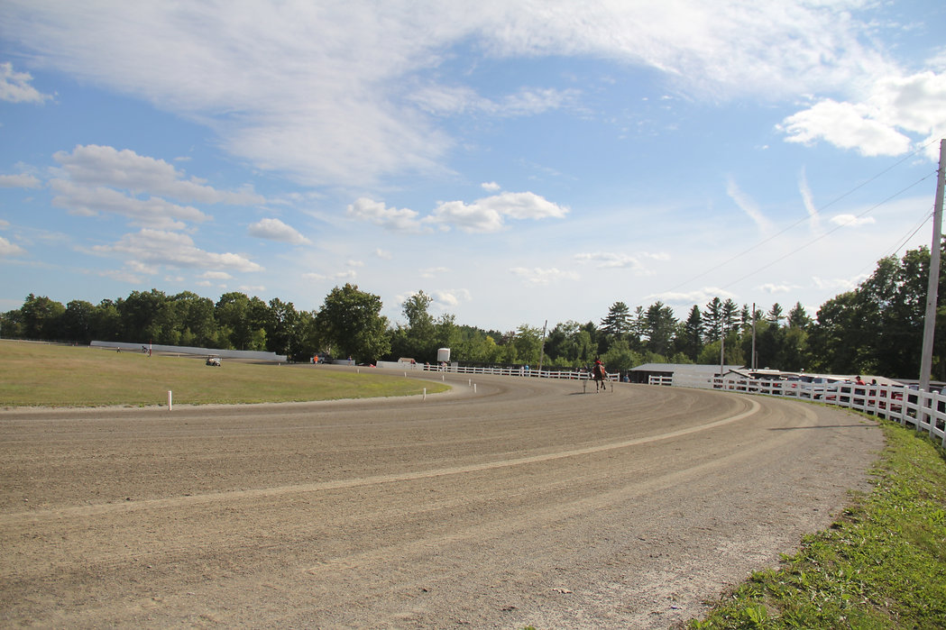 Windsor Fair Harness Racing Paddock