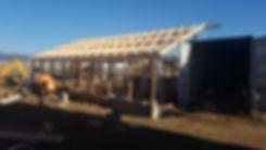 greenhouse 11.jpg