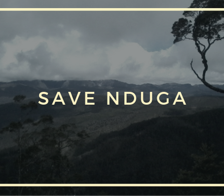 Download: Save Nduga Postcards