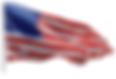 Flag of U.S.A..PNG