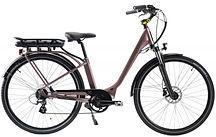 vélo électrique chantenay.JPG