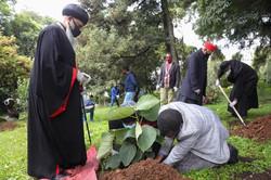 Group of Men Planting 2