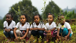 Youth Planting