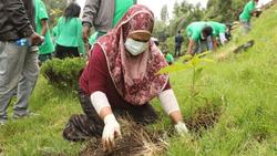 woman-planting