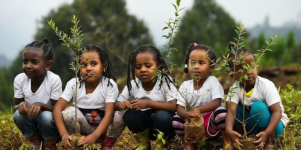 Ethiopia's Green Legacy Historic Day of Planting
