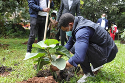 Group of Men Planting