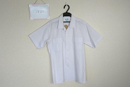 椿中 男子 半袖シャツ 165A