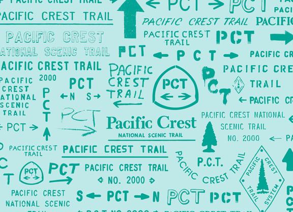 PCT Typography
