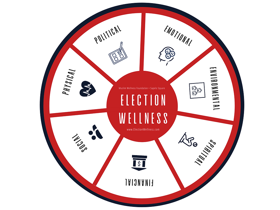 Election Wellness Wheel 2.png