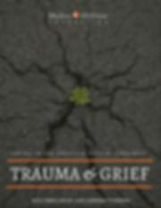 Addressing Trauma Toolkit rev.png