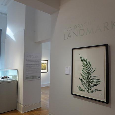 1.Landmarks_Mercer_2016_©_Liza_Dracup.j
