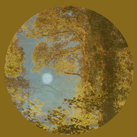 Gold_Circle_(moon)_©LizaDracup2011.jpg