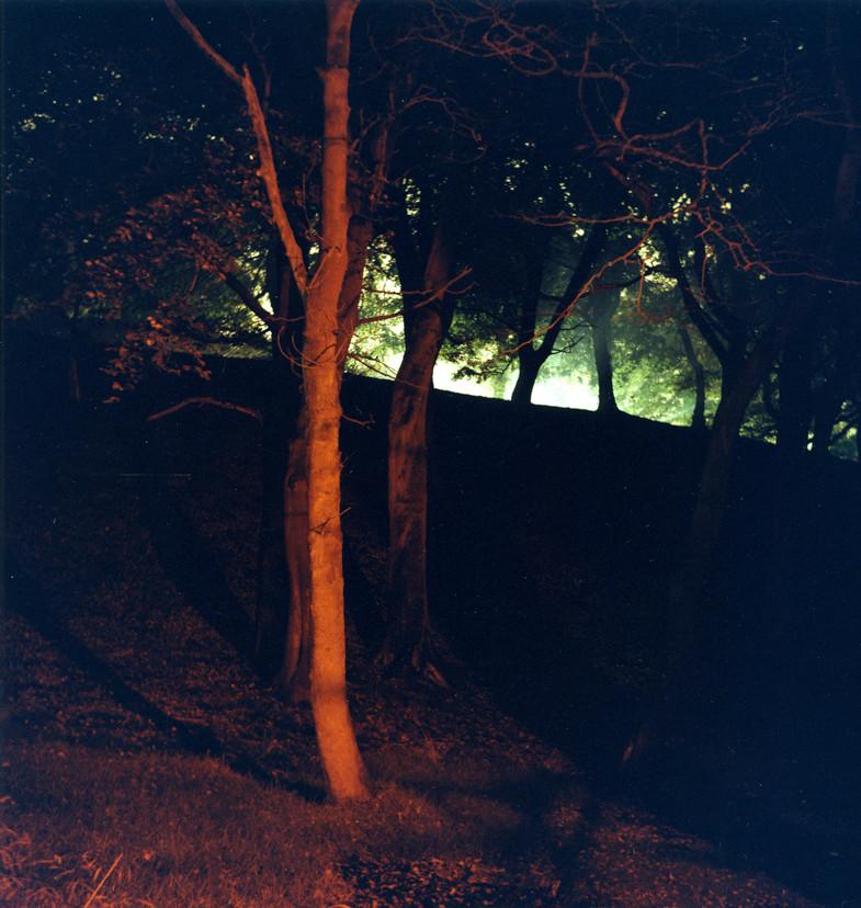 25.Sharpe'sWood.Untitled2007.©LizaDracup