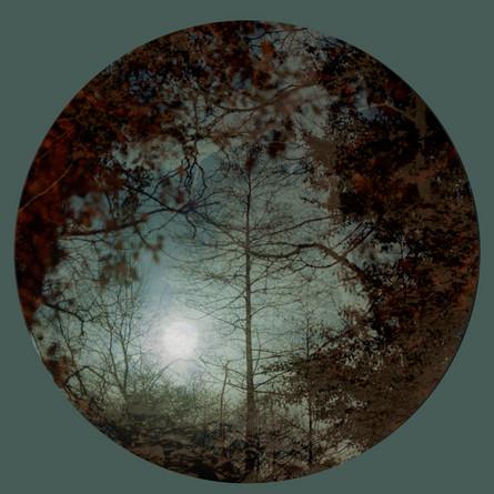 Green_Circle(moon)©LizaDrcaup2011.jpg