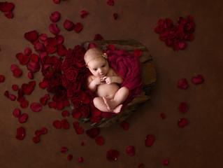 Newborn Indi Rose