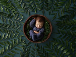 Newborn Bellamy
