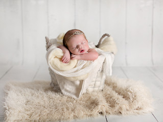 Suzie's Newborn Shoot