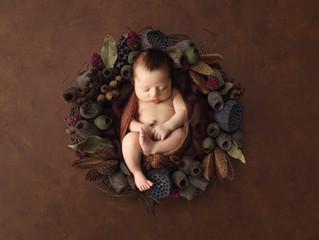 Newborn Leonardo