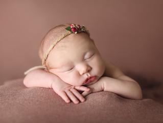Jodi's newborn shoot
