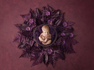 Newborn Neve